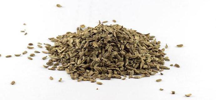 sjemenke mrkve najbolje sorte