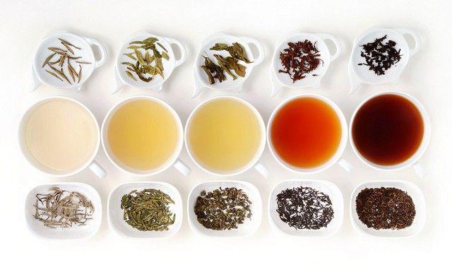 Sorte in vrste čaja