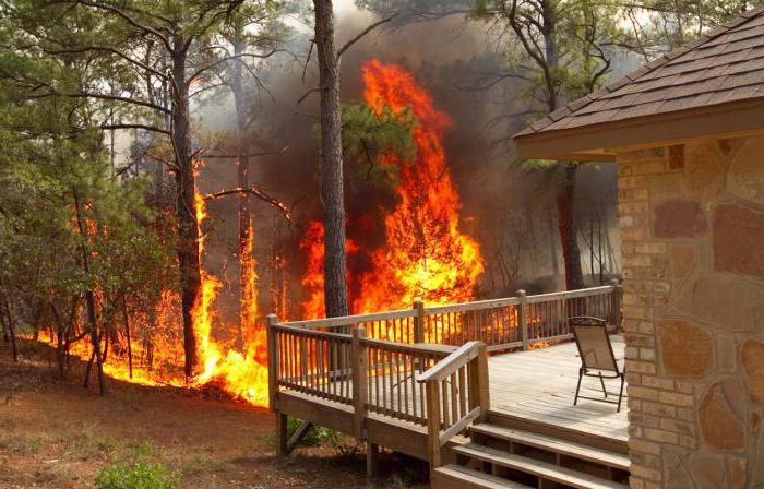 пожар у шуми