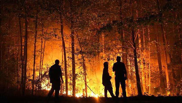 посљедице пожара