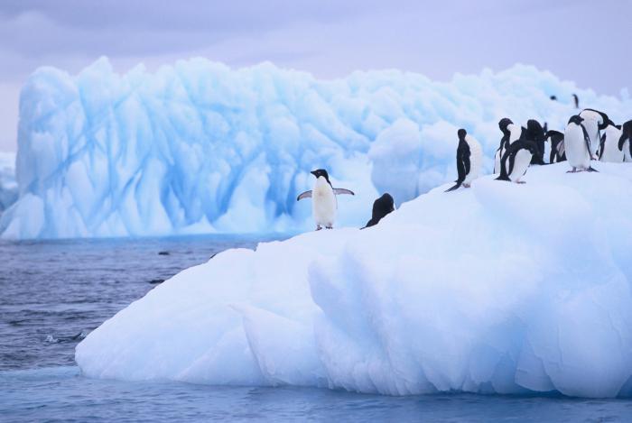 odkrycie antarktyki