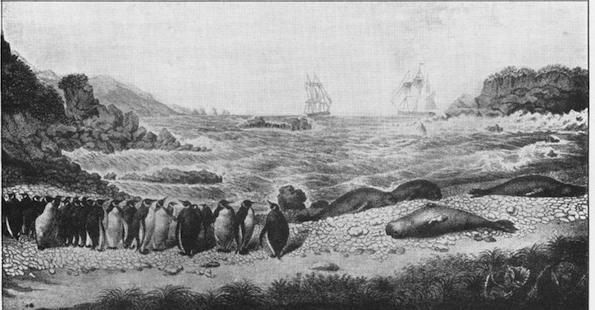 odkrycie rosyjskiej Antarktydy