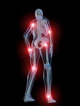 teraflex za bolesti zglobova