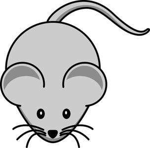 come sbarazzarsi dei topi in un appartamento
