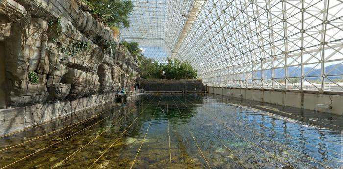 immagini della struttura della biosfera