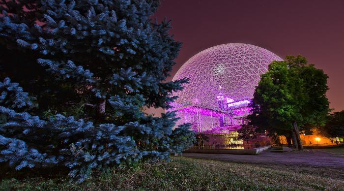 La struttura elementare della biosfera è