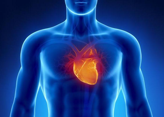 cuore che batte forte