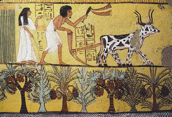 le prime civiltà dell'antico Egitto