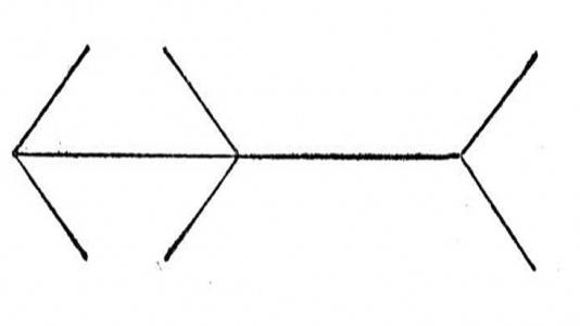 Primer iluzije dojemanja