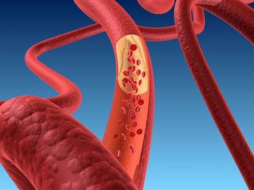 Унутрашње окружење тела је