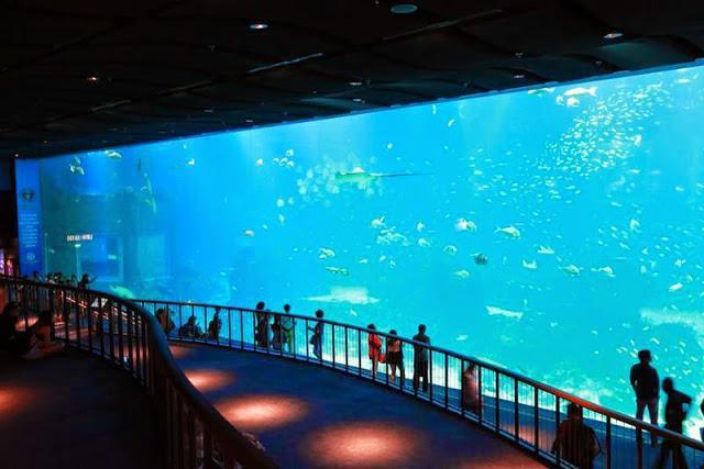 dove è il più grande acquario del mondo