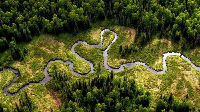 nejdelší řeka planety