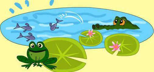 водни местообитания