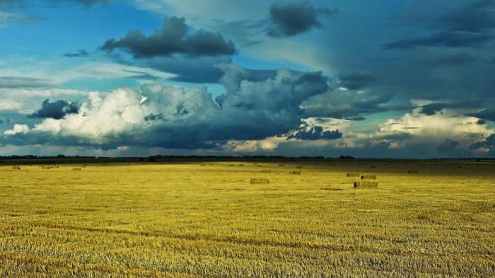 area naturale della steppa del suolo