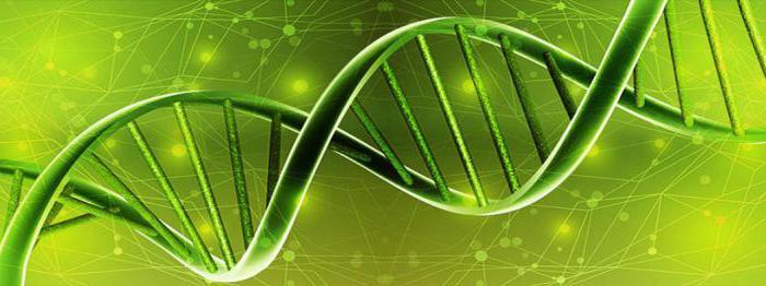 задачи на съвременната биология