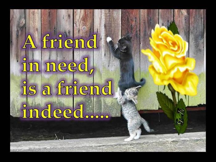 přátelé mají potíže