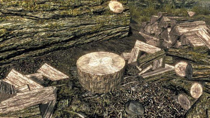 volere dire foresta di trucioli di legno di proverbi significa volare