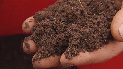 qual è la composizione del suolo