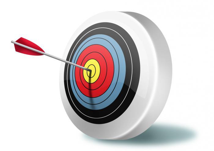 мисија и стратешки циљеви организације