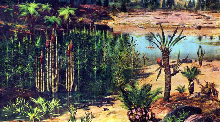które rośliny są najstarsze na ziemi