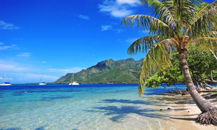 Kukovi otoci