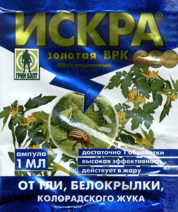 účinný prostředek k odstranění bramborového brouka při výsadbě brambor