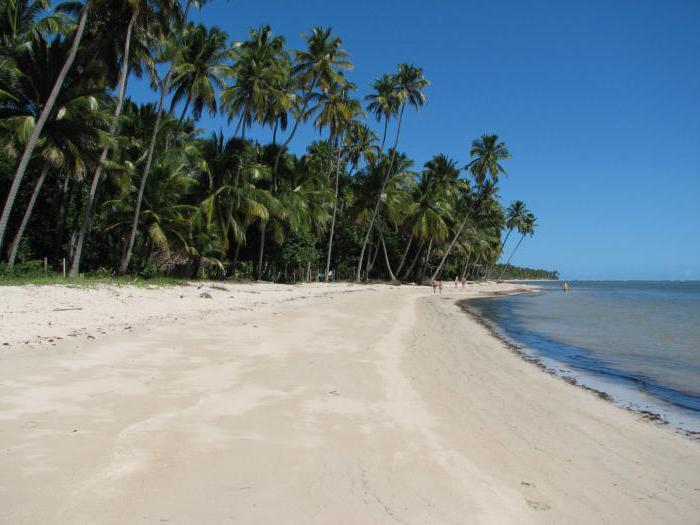spiaggia brasiliana