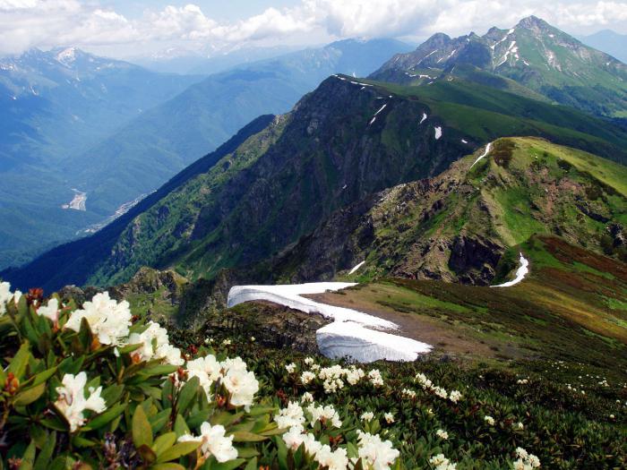 """Резултат с изображение за """"Приморски край на Русия е обявен за национален парк."""""""