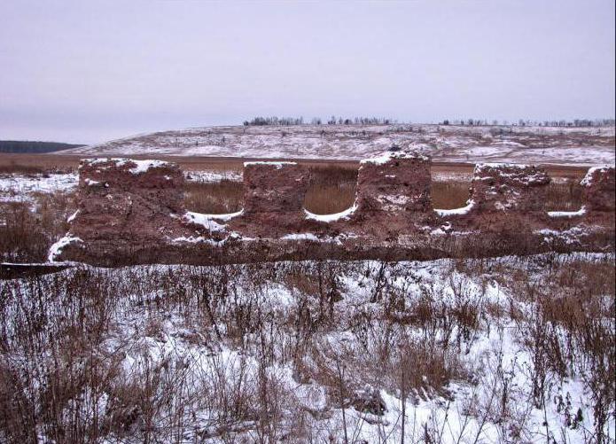diversità della natura della terra natale della regione di Voronezh