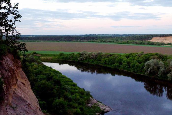 natura della regione di Voronezh