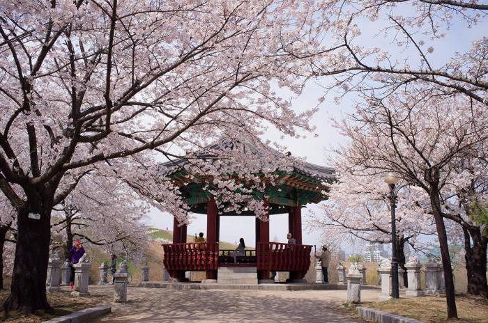 Zatrudnienie w Korei Południowej