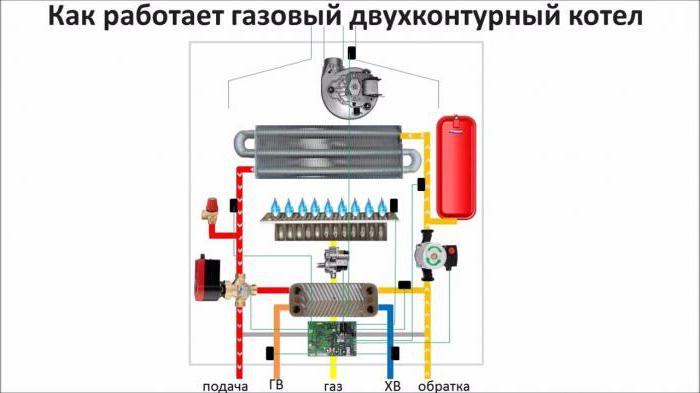 Princip rada plinskog kotla za grijanje: shema