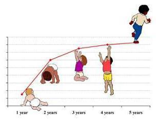 Wzrost i waga nastolatek