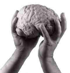 Човешката психика