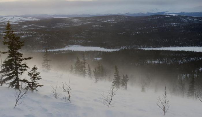 Rezervat Laponske