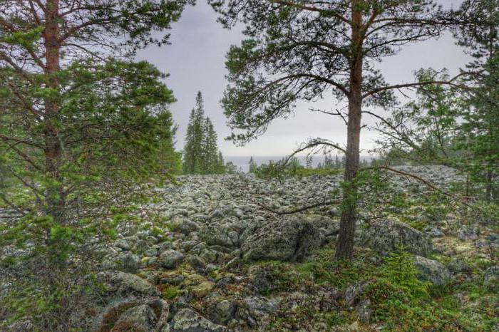 teritorija Laponske rezerve