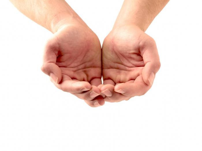 struktura roke