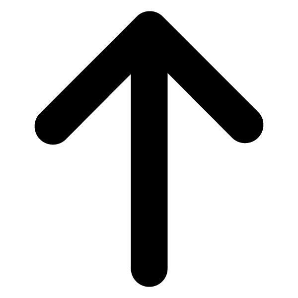 Vertikalna moč