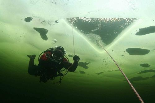 nurkowanie w Morzu Białym