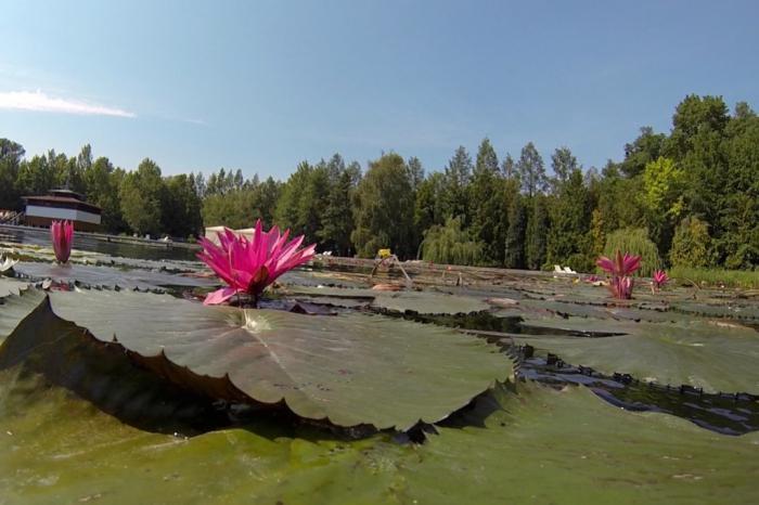 lago di heviz
