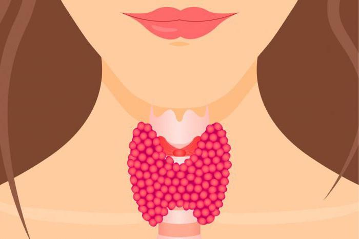 хиперфункция на щитовидната жлеза