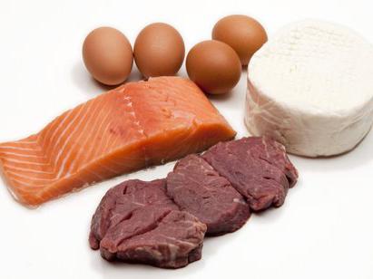 celková norma bílkovin