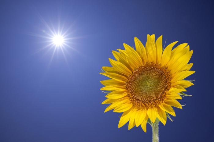 radiazione solare totale