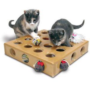 che giocattoli per i gattini