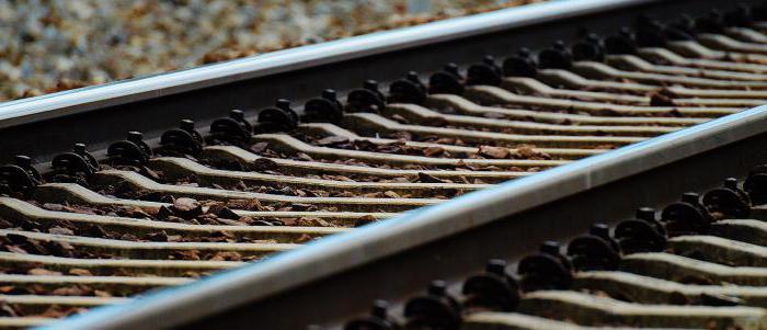 obowiązki pomysłodawcy pociągów