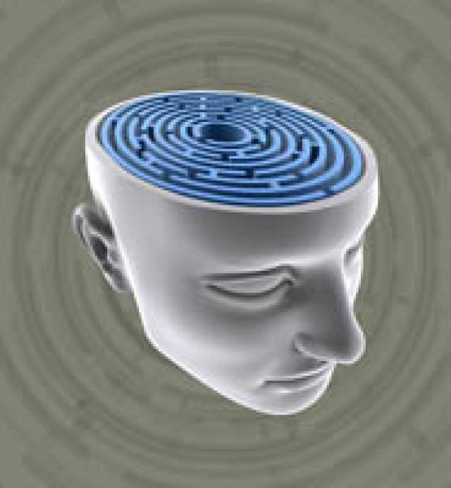 psychologie téma pozornost