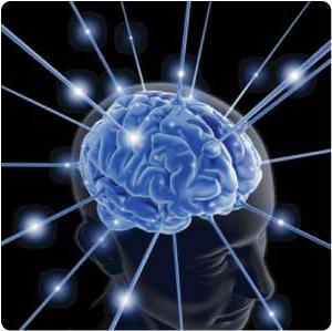 vrste memorije u psihologiji