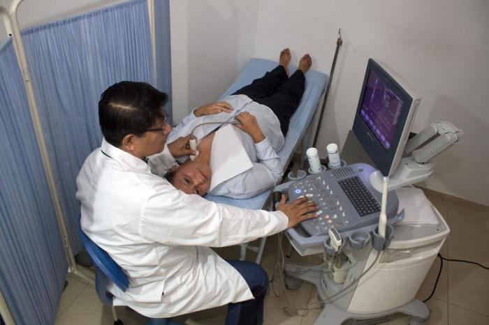 ecografia e vasi cerebrali