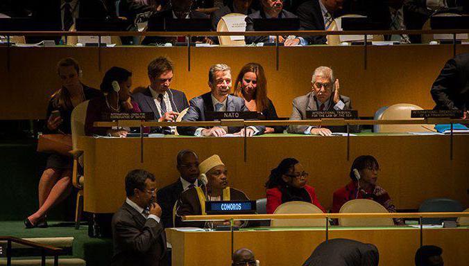 Decisioni dell'Assemblea generale delle Nazioni Unite