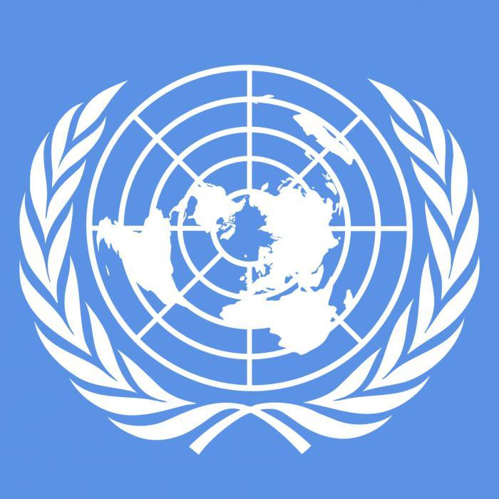 Riunione dell'Assemblea generale delle Nazioni Unite
